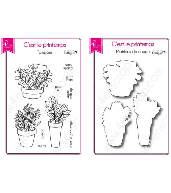 Tampon transparent matrice die Scrapbooking Carterie feuille - C'est le printemps