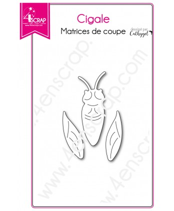 Cutting die Scrapbooking Card making insect provence - Cicada