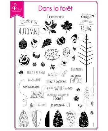 Clear stamp Scrapbooking Card Making fall leaf - In the forest