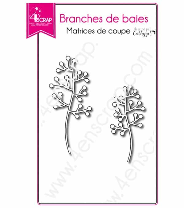 Berries branches