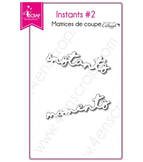 Matrice de coupe Scrapbooking Carterie mot moment - Instants 2