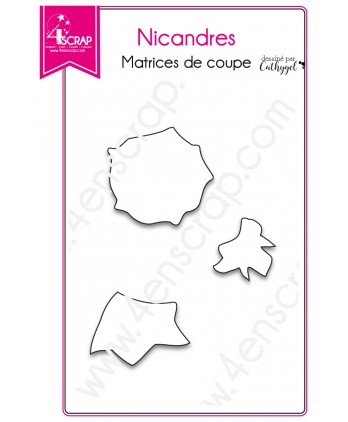 Cutting die Scrapbooking Card making flowers - Nicandres
