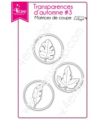 Cutting die Scrapbooking Card making leaf round openwork - Fall transparencies 3