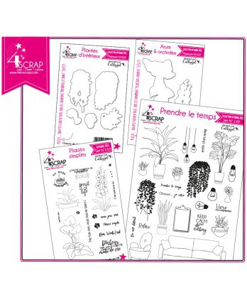 "Clear stamp Cutting die Scrapbooking Card making - Product pack ""Interior decoration"""