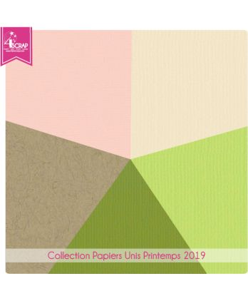 Pack Papier Uni Scrapbooking Carterie - Printemps 2019