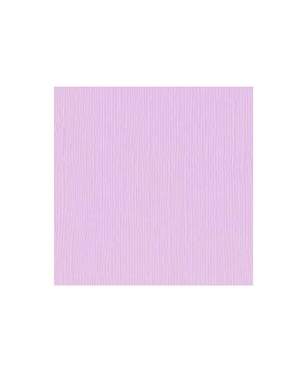 Plain Paper Scrapbooking Card making - Vaessen Lilac
