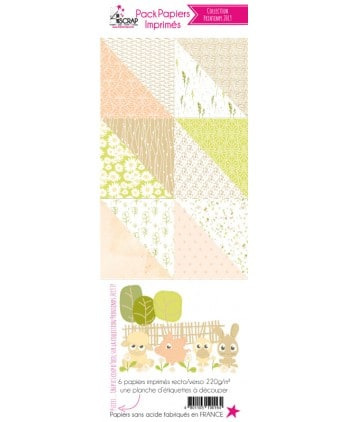 Pack Papier Imprimé Scrapbooking Carterie - Printemps 2019