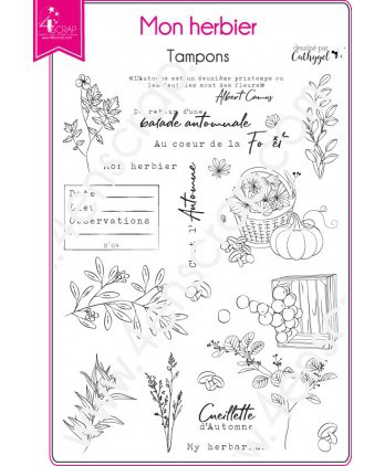 Tampon transparent Scrapbooking Carterie nature feuilles feuillages - Mon herbier
