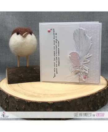 Clear stamp Scrapbooking Card making feathers - Sweat moment
